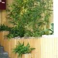 店舗入口造花庭